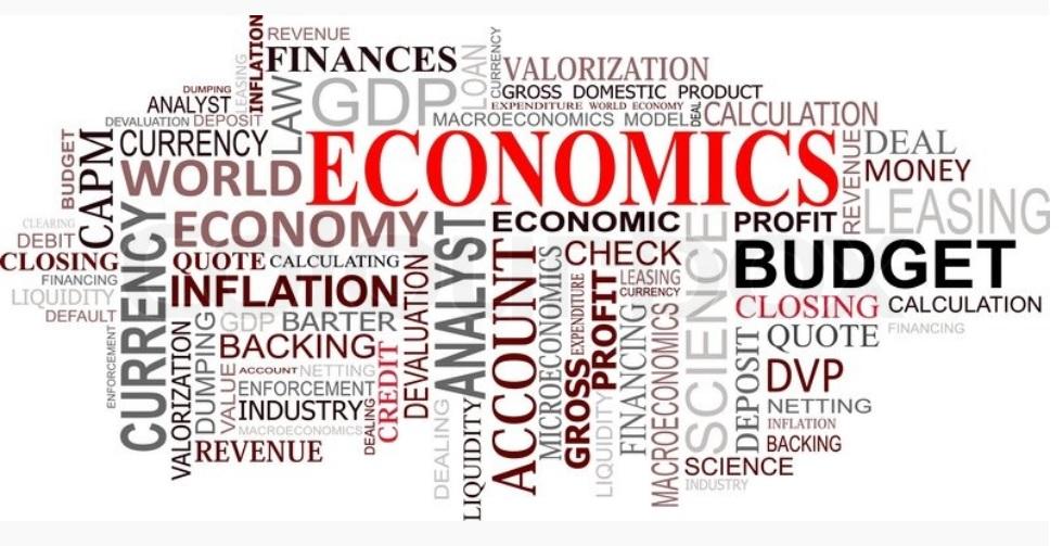 Agriculture  Economics SKNAU PDF