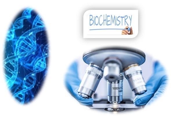 Fundamentals of Plant Biochemistry SKNAU Notes
